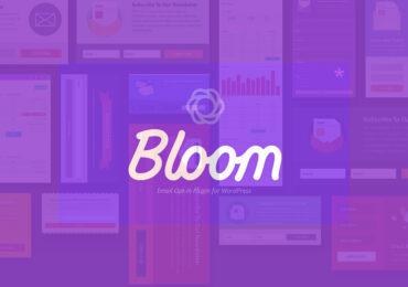 Chia sẻ miễn phí Plugin bloom by elegantthemes WordPress